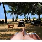 6228769-Under_the_palm_trees_Jetwing_Beach_May_2012_Sri_Lanka