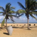 Negombo_Beach,_Sri_Lanka
